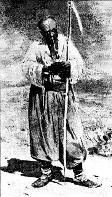 Посполитый казак, 17 век. Худ. С. Василькивский
