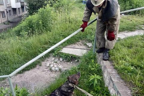 Сотрудники Службы спасения г. Каменское спасли собаку Днепродзержинск