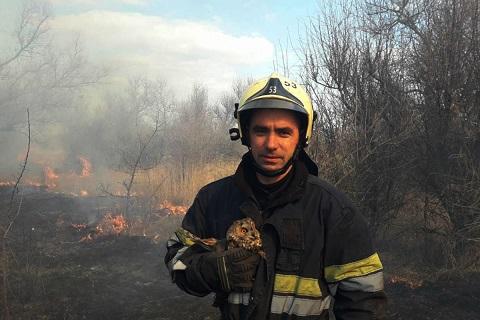 Под г. Каменское спасли птицу Днепродзержинск