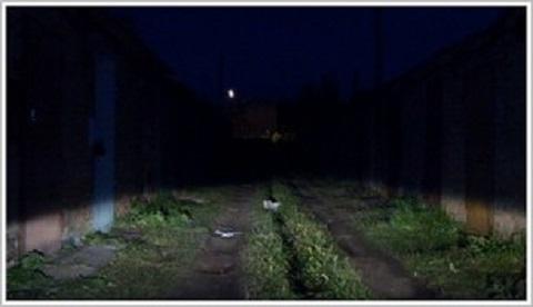 На территории «ДМК» г. Каменское провели проверку наружного освещения Днепродзержинск
