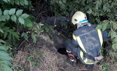 Спасатели г. Каменское провели спасательную операцию Днепродзержинск