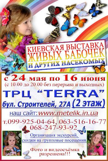 Выставка «Живых бабочек и других насекомых» в Каменском! Днепродзержинск