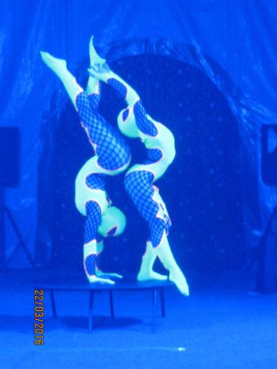 Цирк «Престиж» с международной шоу-программой «Золотой караван»!!!  Днепродзержинск