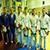 Юноши представляли Каменское на областном чемпионате по дзюдо