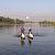В г. Каменское провели соревнования по водному туризму