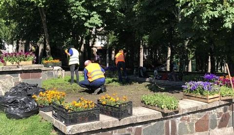 Цветы украшают центральный сквер в г. Каменское Днепродзержинск