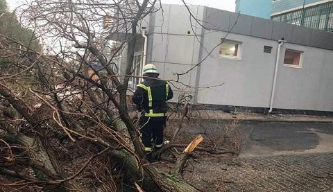 Порывы ветра и дождь в Каменском стали причиной травмирования людей  Днепродзержинск