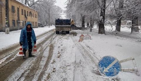 В Каменском снег перегрузил ветви деревьев Днепродзержинск