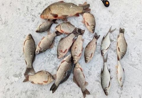 Каменские рыбаки изобрели новый способ зимней рыбалки Днепродзержинск