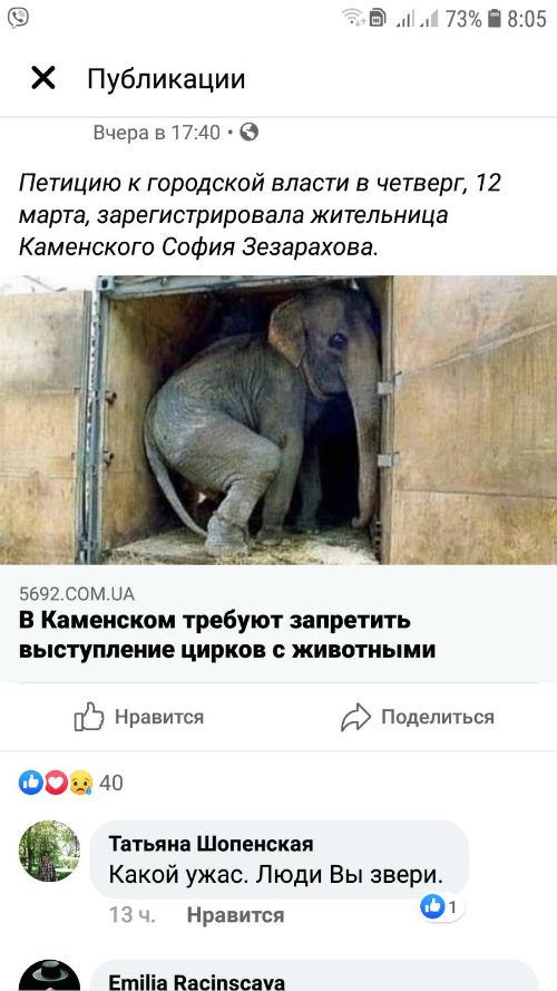 Как в Каменском циркового слона Кузю спасали Днепродзержинск