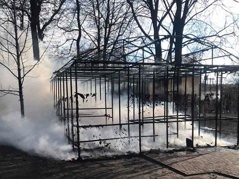 В Каменском ликвидировали пожар на территории Центрального парка Днепродзержинск