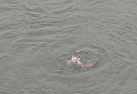 Спасатели Каменского искали прыгнувшего с моста парня Днепродзержинск