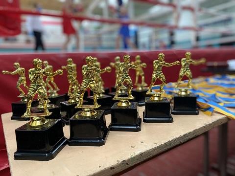 Каменские боксеры провели чемпионат города Днепродзержинск