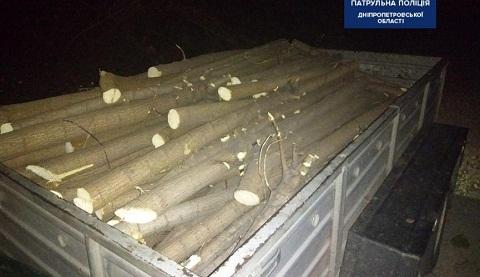 Полицейские в г. Каменское задержали лесорубов Днепродзержинск