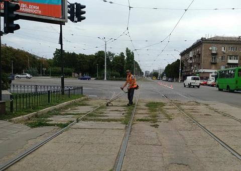 В Каменском ведут борьбу с карантинными травами Днепродзержинск