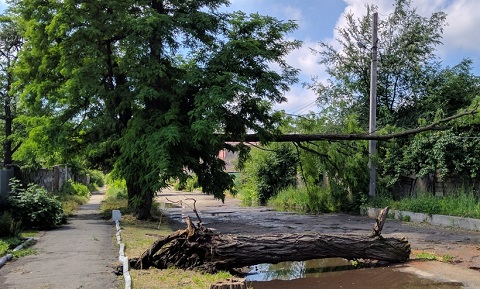 В Каменском до конца дня должны устранить все вызванные ураганом аварийные ситуации  Днепродзержинск