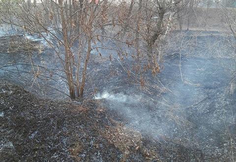 Спасатели просят жителей Каменского отказаться от сжигания мусора с разведением костров Днепродзержинск