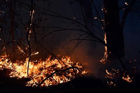 Спасатели ГПСЧ № 9 г. Каменское два раза выезжали на ликвидацию пожара Днепродзержинск