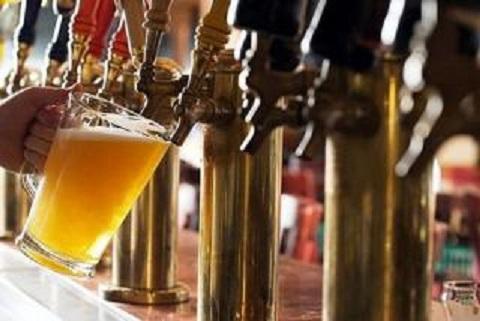 На День города в Каменском проведут фестиваль пива и дефиле собак Днепродзержинск