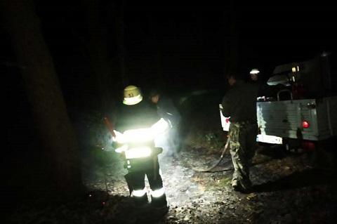 В субботу под Каменским тушили лесной пожар Днепродзержинск