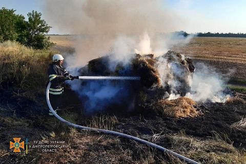 Под г. Каменское сгорел стог сена Днепродзержинск