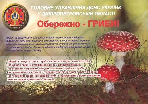 В Каменском подозревают семейный случай отравления дикорастущими грибами  Днепродзержинск