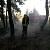 Каменские спасатели ликвидировали возгорание травы в лесу