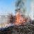 В Каменском ликвидировали пожары в экосистемах