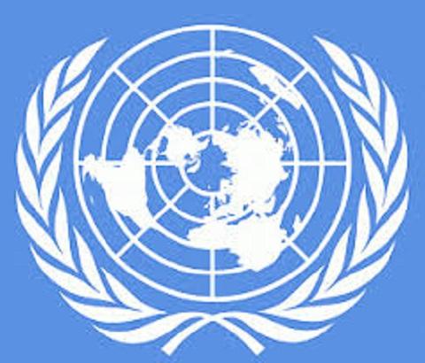 Молодых жителей Каменского приглашают на презентацию «Молодежный делегат Украины в ООН» Днепродзержинск