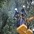 Каменское восстанавливает электроснабжение после бури