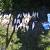 Очередной браконьер был выявлен на Каменском водохранилище