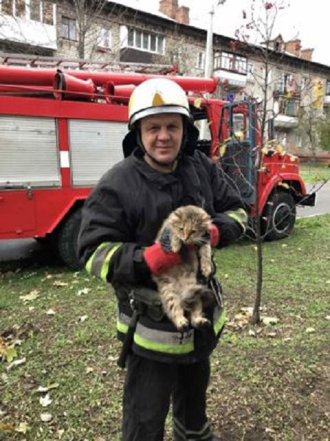 Операцию по спасению кота провели на Днепрострое г. Каменское Днепродзержинск