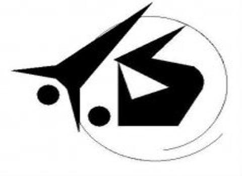 Каменские акробаты успешно выступили на турнире «Весенняя звезда» Днепродзержинск