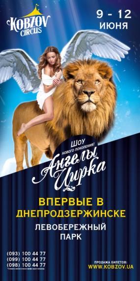 На левом берегу Днепродзержинска (Каменского) цирк Кобзов Днепродзержинск