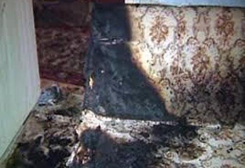 В Каменском спасатели тушили диван Днепродзержинск