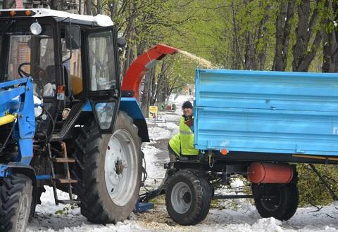 Коммунальные службы Каменского устраняют завалы упавшей растительности Днепродзержинск