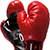 Каменский боксер стал чемпионом Украины