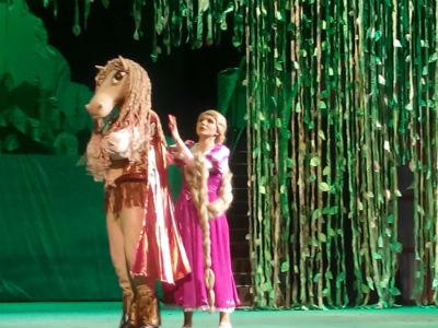 Волшебная сказка «Рапунцель» в каменском театре Днепродзержинск