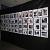 К прошедшему Всемирному дню мира в Каменском открыли фотовыставку