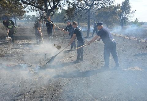 Спасатели ликвидировали пожар в экосистеме недалеко от Каменского Днепродзержинск