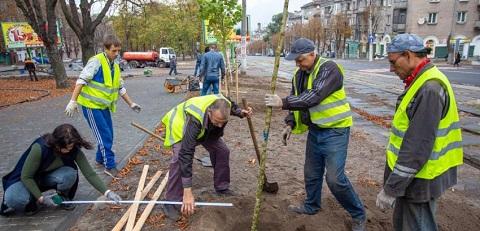 По проспекту Свободы в Каменском высадили аллею молодых деревьев Днепродзержинск