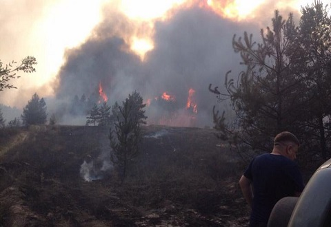Под г. Каменское спасатели боролись с лесными пожарами Днепродзержинск
