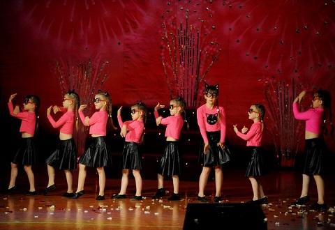 «Территория движения» в Каменском провела отчетный концерт Днепродзержинск