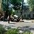 Трактор «Горводоканала» г. Каменское попал в западню при проведении аварийных работ