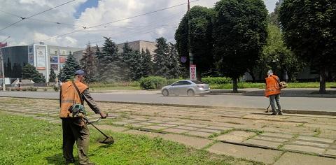 Трамвайные пути в Каменском очищают от сорняка  Днепродзержинск