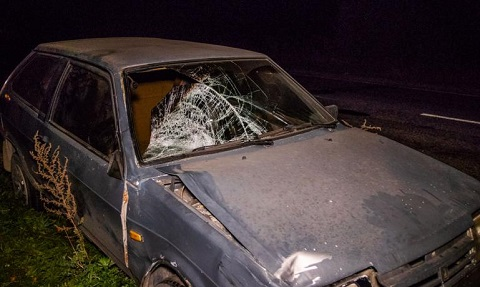На трассе между г. Каменское и Карнауховкой произошло ДТП Днепродзержинск