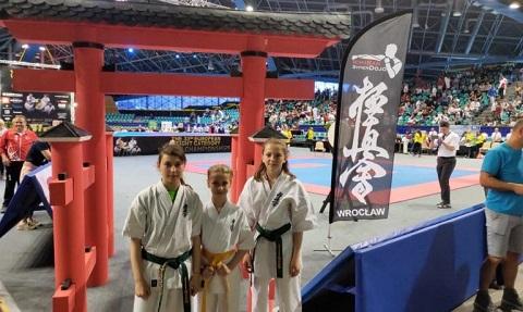 Две награды чемпионата Европы по киокушин карате получила спортсменка г. Каменское  Днепродзержинск