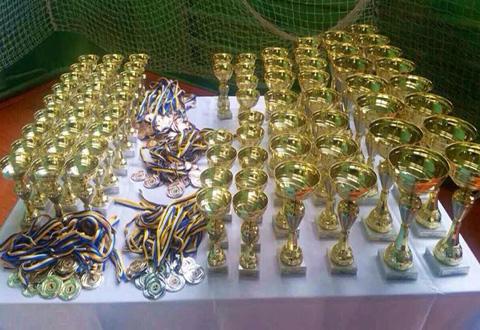 Каменские грации привезли с Международного турнира «Триумф» 4 медали Днепродзержинск
