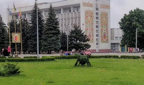 В Каменском на главной клумбе у горсовета восстановили топиары Днепродзержинск