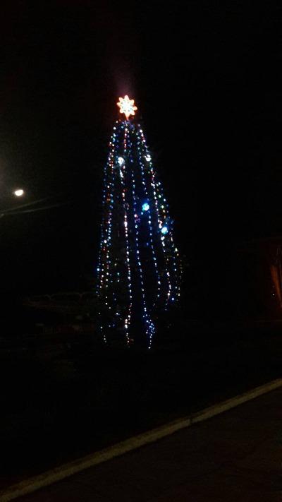В левобережном парке Каменского зажгли ёлку Днепродзержинск